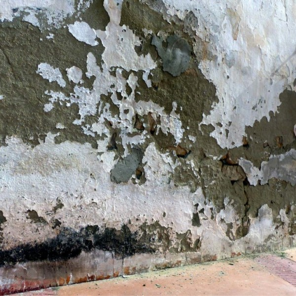 How to prevent damp